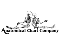 Anatomical Chart Company-coupon-and-deals